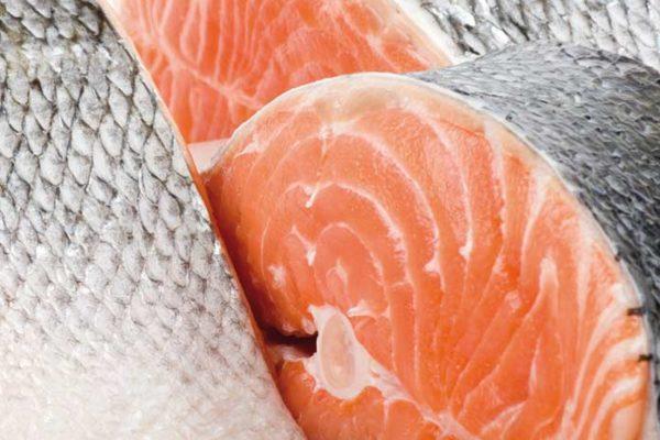 Fisch Großhandel - Fischmarkt Rostock