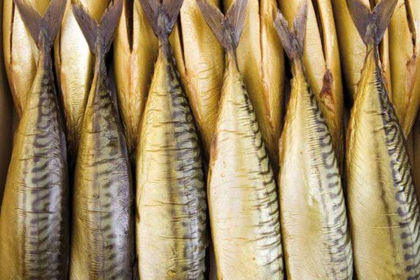 Raucherfisch von Fisch und Feinkost